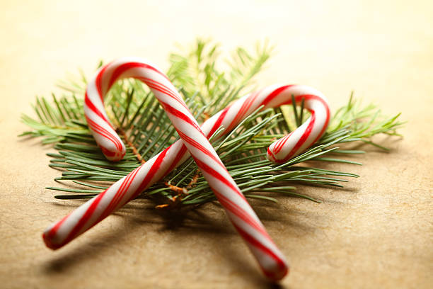 Pair Of Candy Canes Resting On Small Pine Boughs A pair of overlapping candy canes rest on top of a small pile of pines boughs.  The image is captured with a very shallow depth of field. candy cane stock pictures, royalty-free photos & images