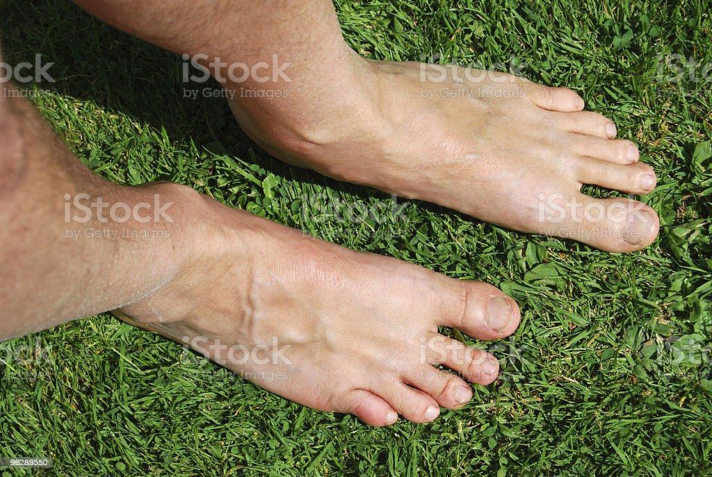 Coppia di piedi sull'erba foto stock royalty-free