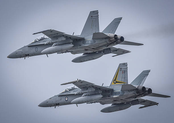 Pair of Hornets stock photo