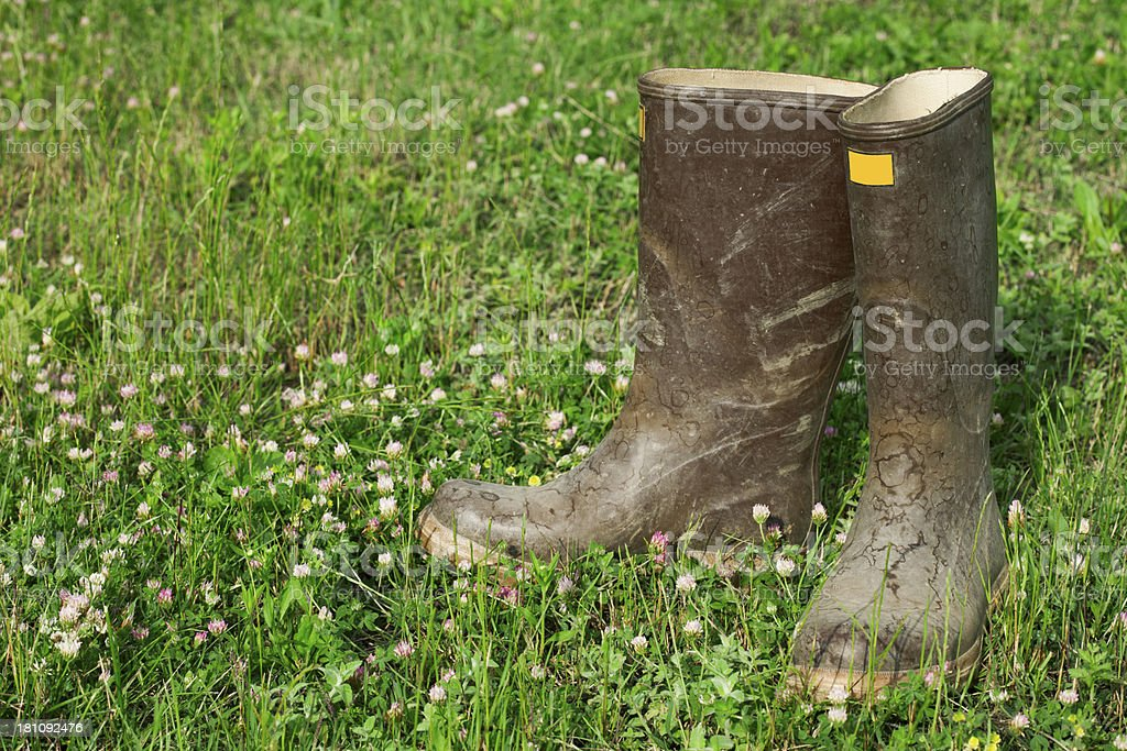 pair of muddy wellington boots royalty-free stock photo