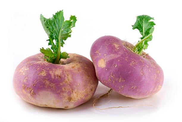 Pair of purple turnips with green leaves bildbanksfoto