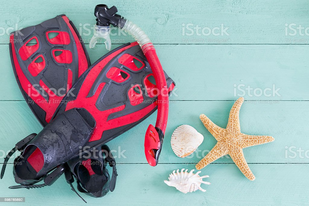 Pair of red and black flippers with seashells stock photo