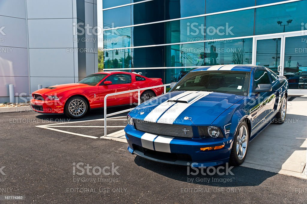 Pair of Shelby Mustangs stock photo