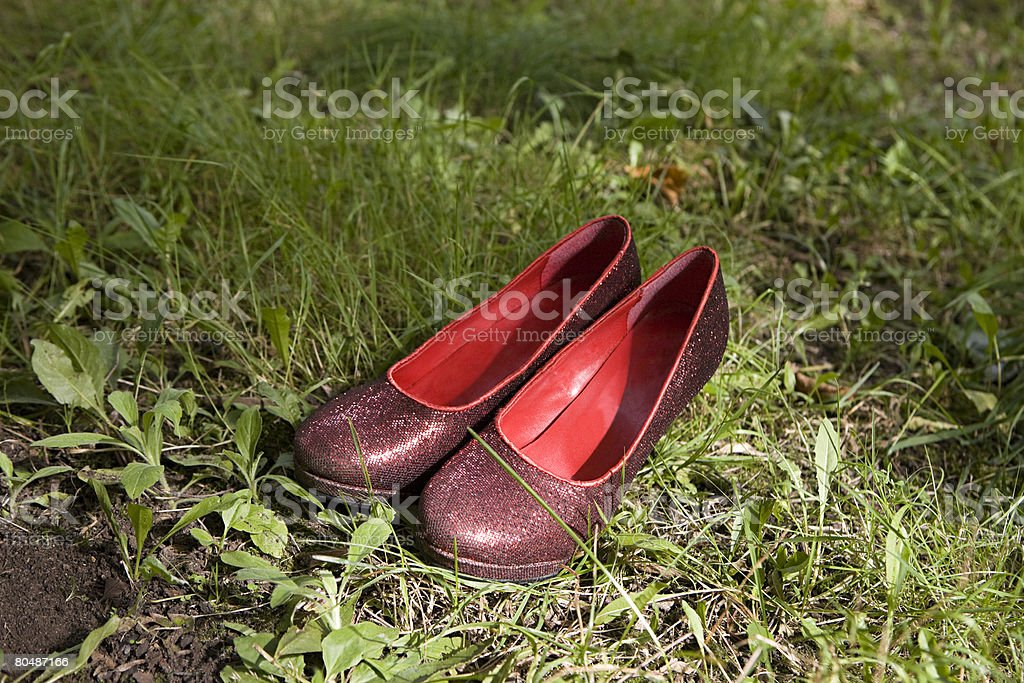 Eine glänzende Schuh Lizenzfreies stock-foto