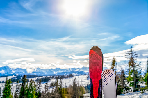 A pair of skis with blurred view on forest and snowy Tatra Mountains in winter