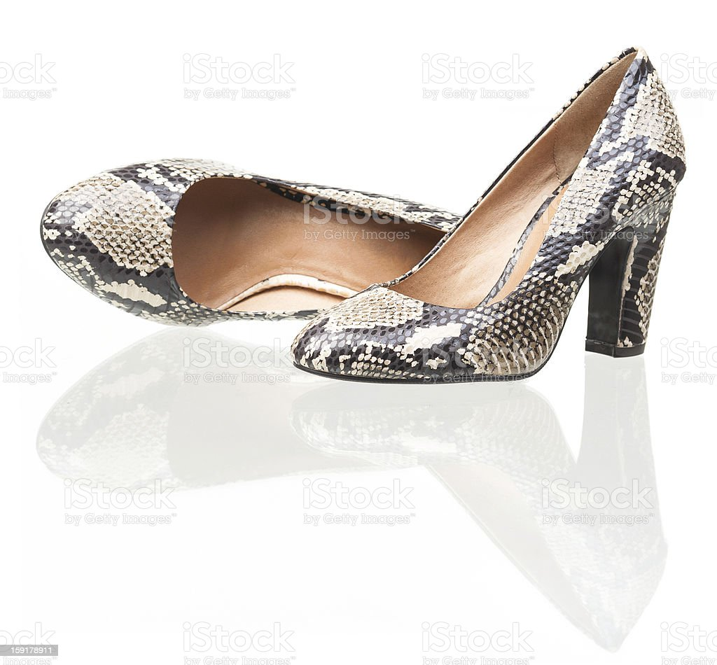 Pair of snake leather women shoes royalty-free stock photo
