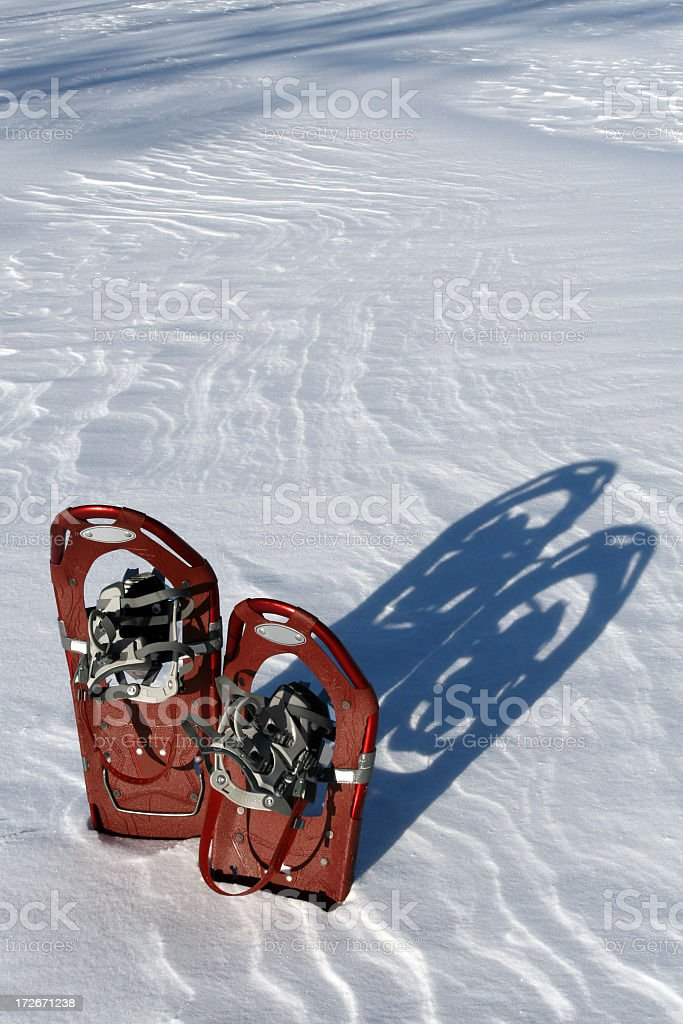 Pair of Snowshoes Planted in Powder Snow royalty-free stock photo