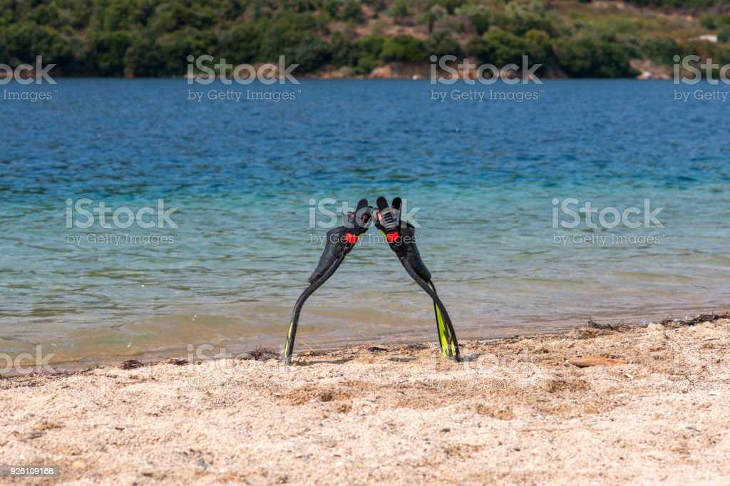 Pair of swimmeret standing on the beah. stock photo