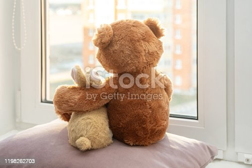 Best friends teddy bear and bunny toy sitting on window sill hugging each other and looking out of window. Back view. Love, family and friendship concept.