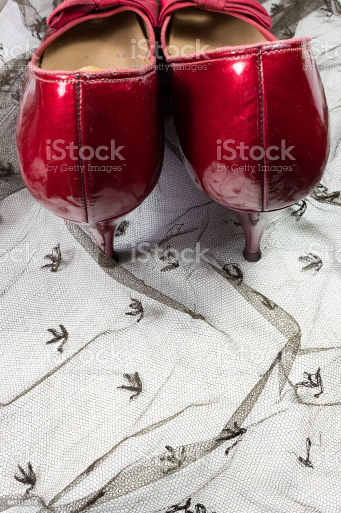 Pair of women's vintage shoes in ruby red viewed from the rear, on sheer black lace, copy space stock photo