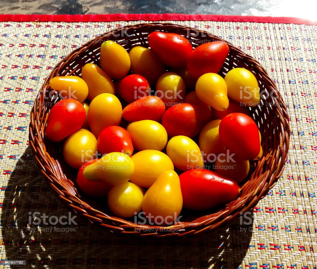 Pair Tomatoes 1 stock photo