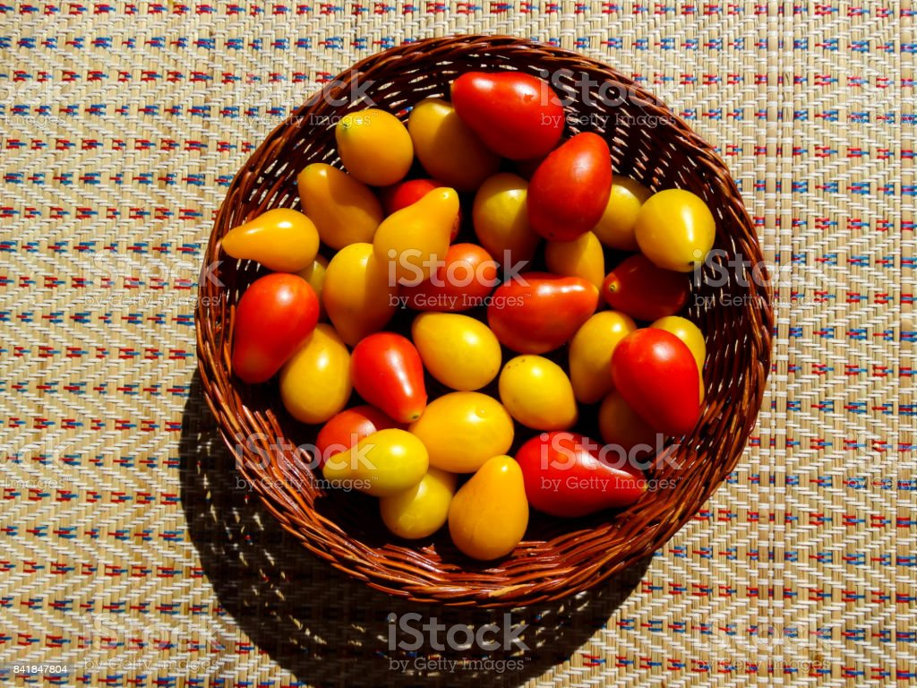 Pair Tomatoes 2 stock photo