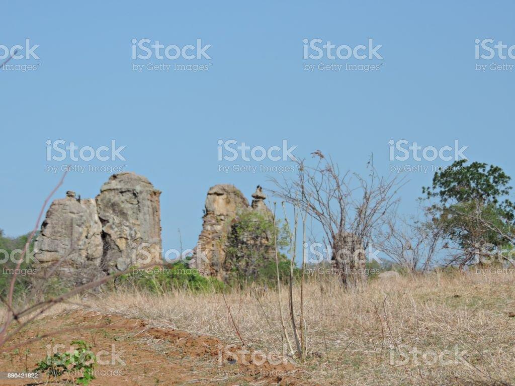 Paisagem/ Montanhas de rocha na caatinga no Nordeste do Brasil stock photo