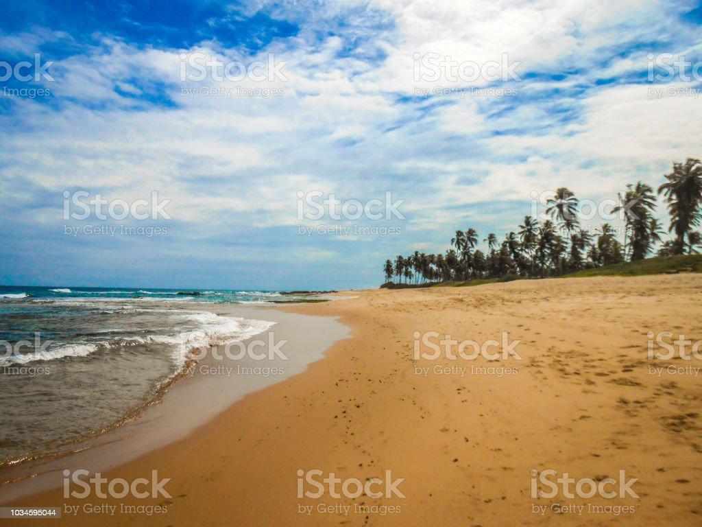 Paisaje Tropical Salvador Bahia Foto De Stock Y Más Banco De Imágenes De Agua