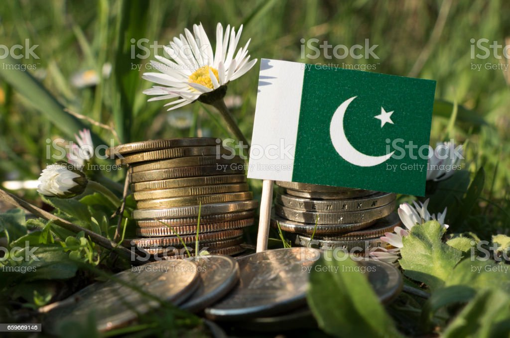 Pakistani flag with stack of money coins with grass and flowers stock photo