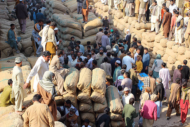 Pakistani Food Traders At Fruit And Vegatable Market Lahore, Pakistan - February 13, 2015: Pakistani food traders in action during the daily potato auction. lahore pakistan stock pictures, royalty-free photos & images
