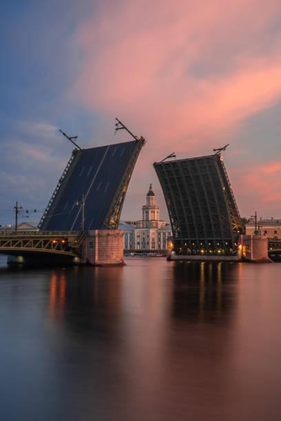 palace bridge - neva stockfoto's en -beelden