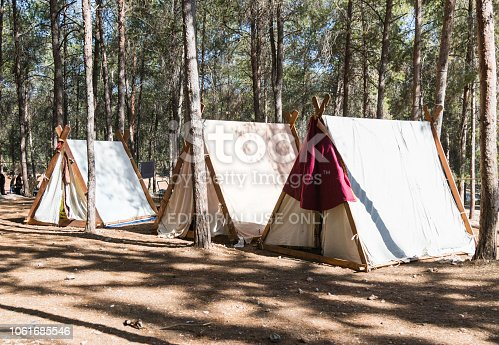 1061685100istockphoto Palaces of Vikings in the camp of