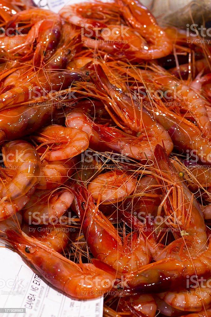 Palamós camarones - foto de stock