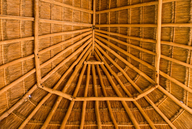 palapa construction of roof stock photo