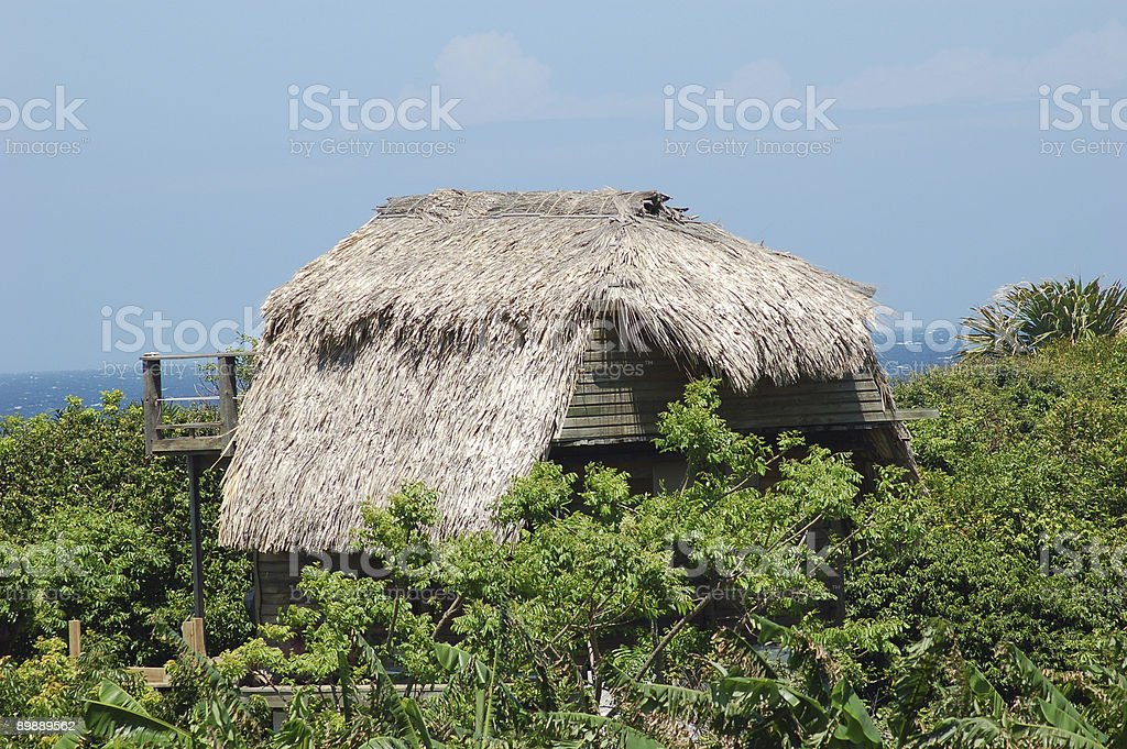 Palapa Roof royalty-free stock photo