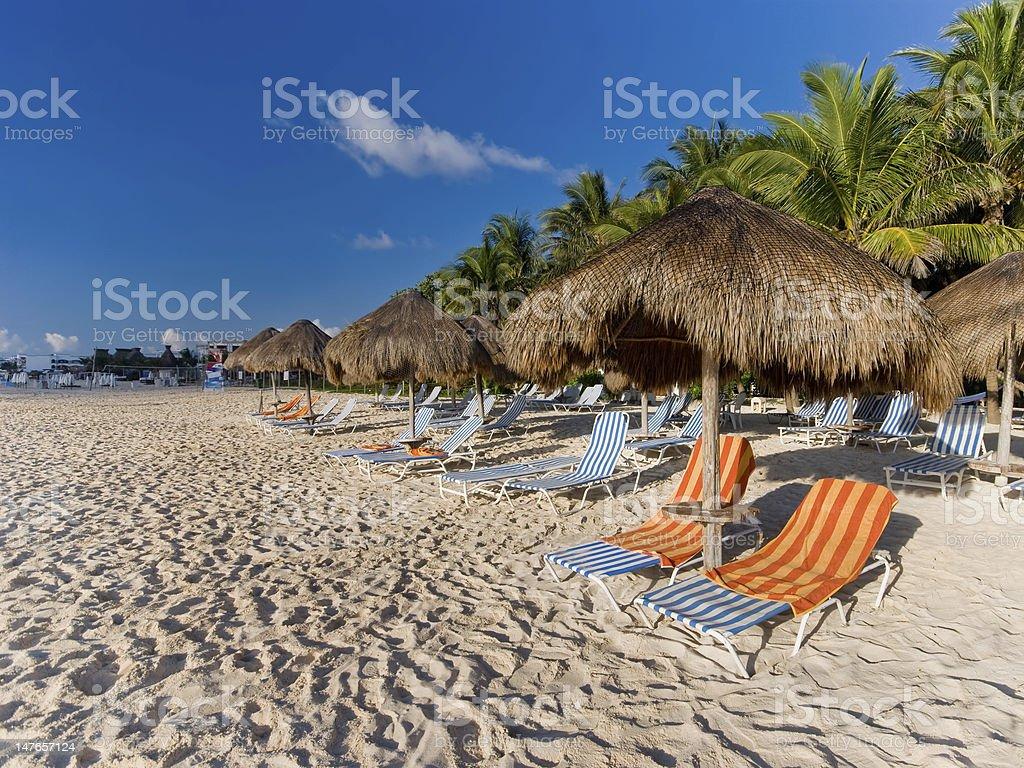 Palapas at a Caribbean beach in Mexico stock photo