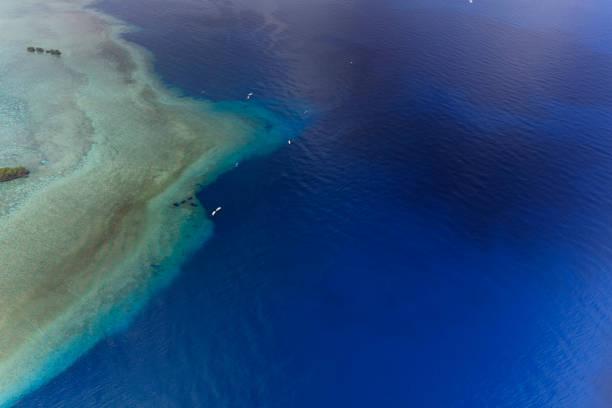 Palau Blue Corner und Blue Hole - UNESCO-Welterbe- – Foto