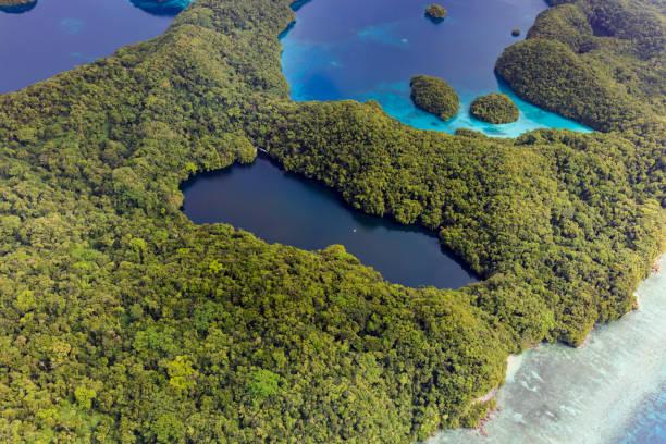 Palau Jellyfish Lake - UNESCO-Welterbe- – Foto
