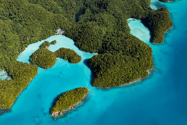 Palau Milky Way (Cove of natural luxury cosmetics) – Foto