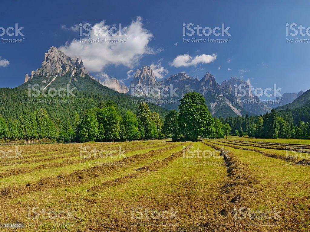 Pale di San Martino (Dolomiti - Italia) stock photo