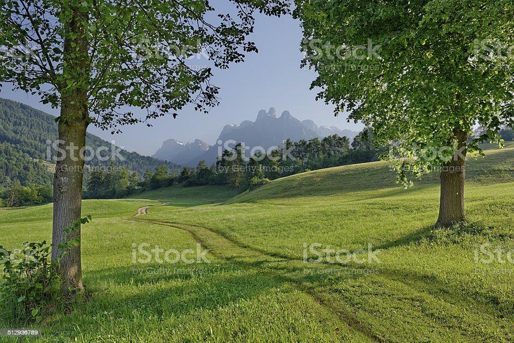Pale di San Martino (Fiera di Primiero) stock photo