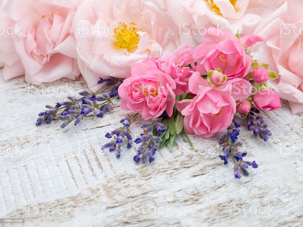 Pale pink roses and lavender bouquet stock photo