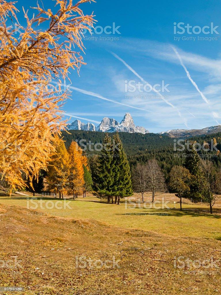 Pale  San Martino, Trentino, Dolomites, Italy stock photo