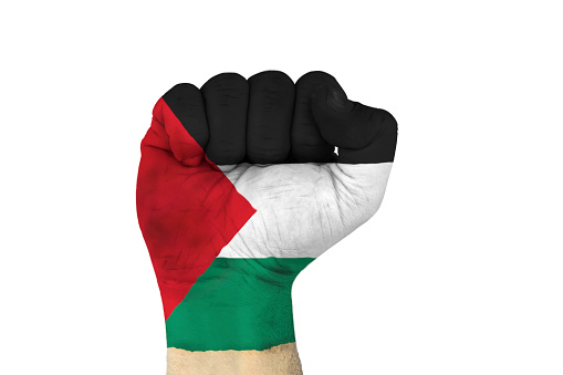male hand in fist shape with flag covered