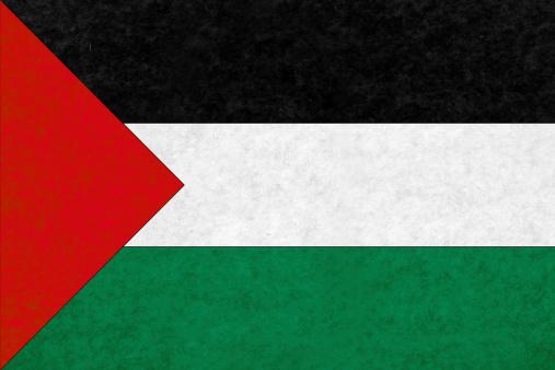 Palestine flag on mottled paper.