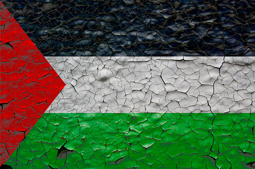 palestine flags painted over cracked concrete wall.