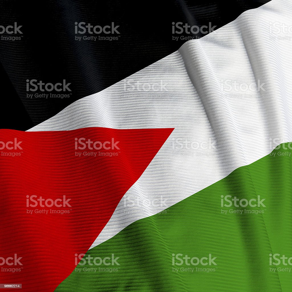 Palestinean Flag Closeup royalty-free stock photo