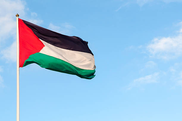 Flag of Palestine in the West Bank Palestinian flag and sky. Photo taken in the West Bank. historical palestine stock pictures, royalty-free photos & images