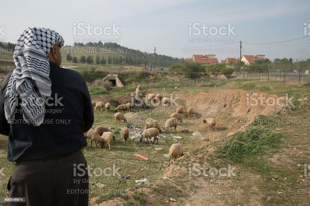 Palestinian shepherd outside West Bank Israeli settlement stock photo
