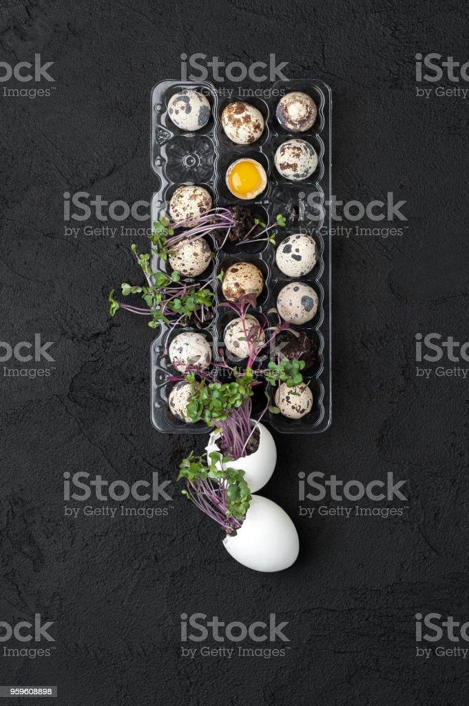 Paleta com ovos de codorna frescos e agrião sobre um fundo preto. - foto de acervo