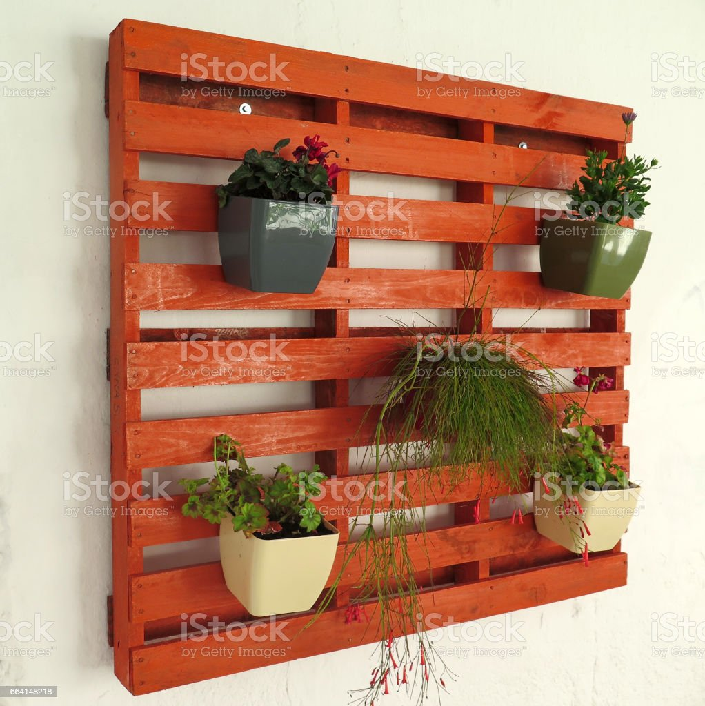 Pallet with Flowers - Orange foto stock royalty-free