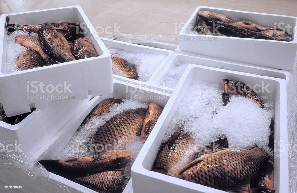 Pallet with fresh fish at a wholesale market. stock photo