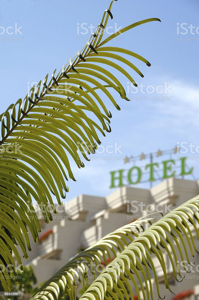 Palm and hotel royalty-free stock photo