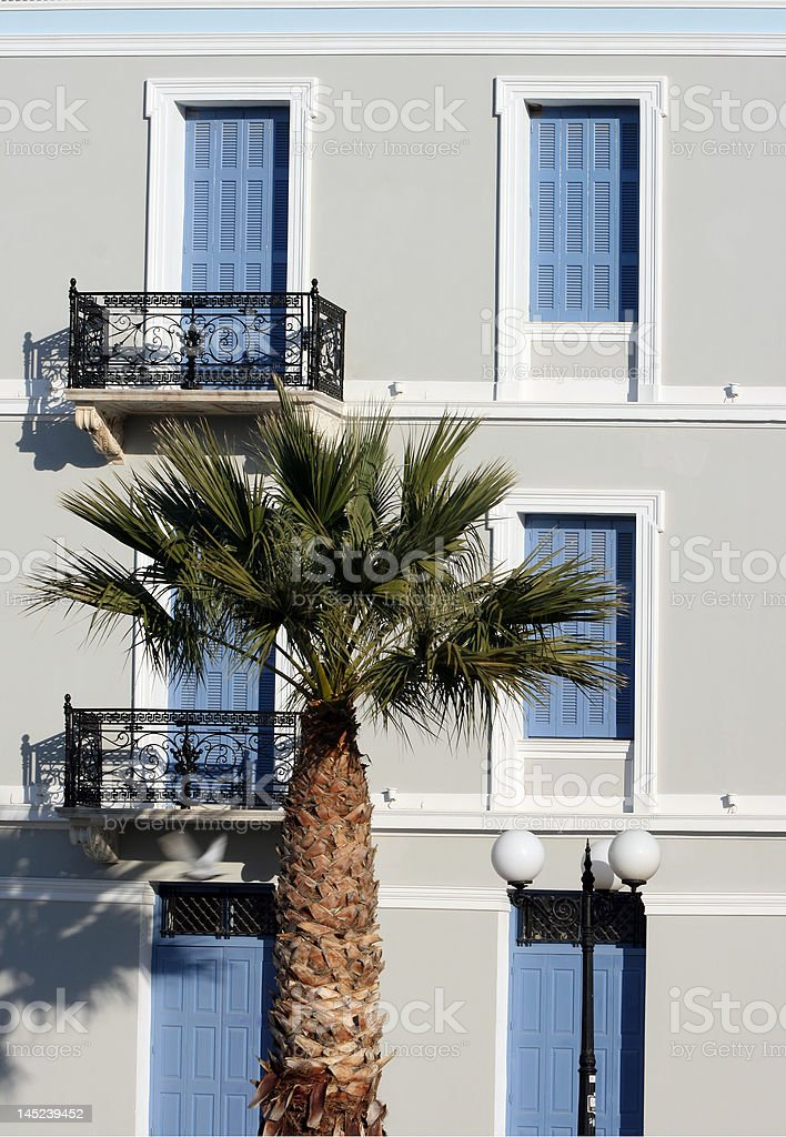 palm and style royalty-free stock photo