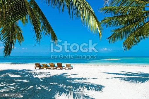 Photogenic palm and sunbeds at tropical paradise beach at Maldives, Addu City, Herathera island, Addu atoll (former Seenu Atoll), Maldives. Property released. Luxury travel holidays background.