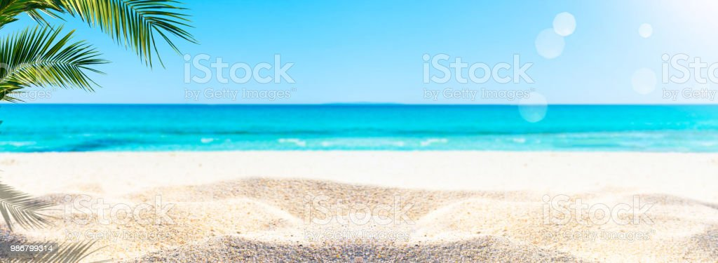 kum plajda palmiye - Royalty-free Akdeniz Stok görsel