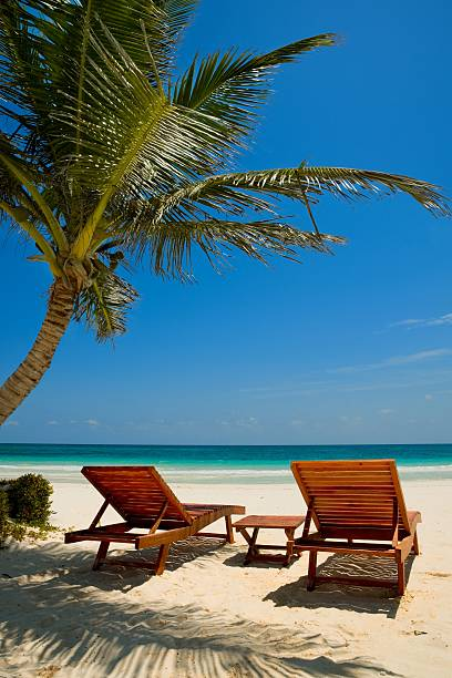 Palm beach chairs tropical sea stock photo