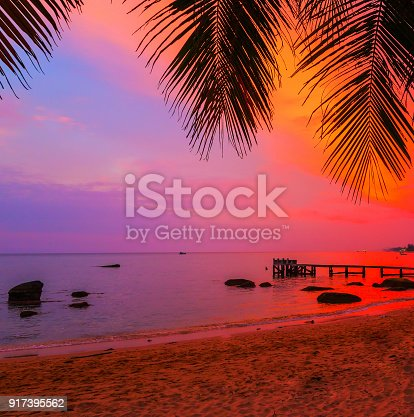 istock Palm beach, Maldives islands silhouettes of trees at sunset 917395562
