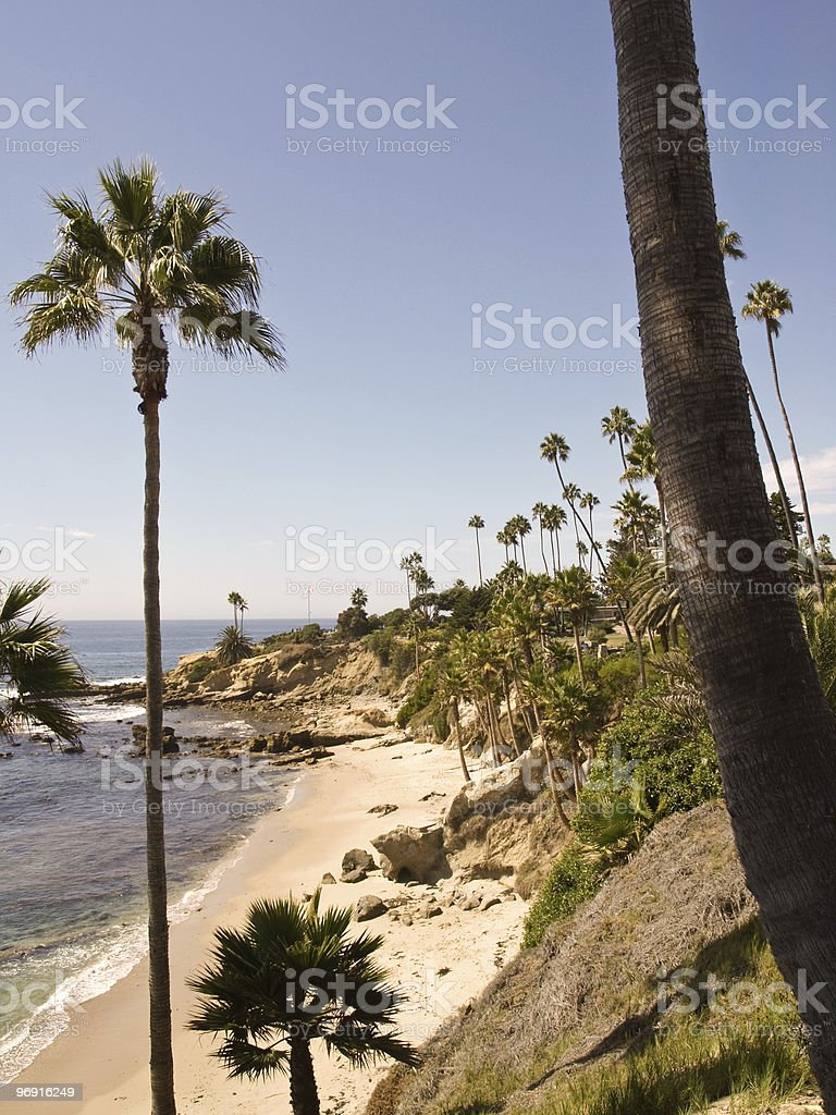 palm beach with rocks royalty-free stock photo