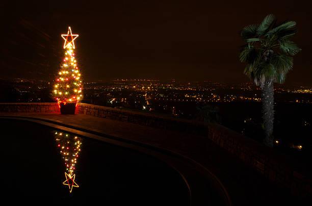 Palm & albero di Natale - foto stock